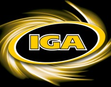 21.11.2015 – Hammond Experience an der IGA